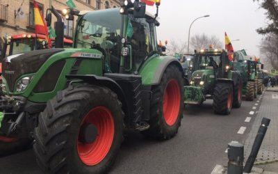 """""""El campo unido jamás será vencido"""": las protestas de miles de agricultores llegan también a Toledo"""
